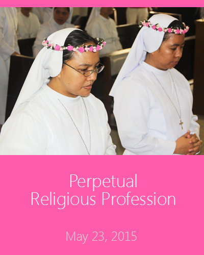 gallery images - perpetual profession